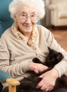Elderly woman with cat