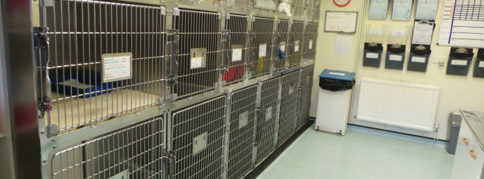 brookhouse_hospital_facilities_kennels